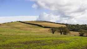 Montes e vales ondulados típicos do condado para baixo em Irlanda do Norte Fotografia de Stock Royalty Free