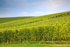 Montes em Piedmont, Itália: paisagem Foto de Stock Royalty Free