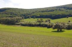 montes, floresta e céu azul fotografia de stock