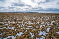 Montes nevado de Dartmoor Imagens de Stock Royalty Free