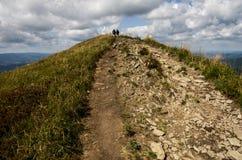 Montes no parque nacional de Bieszczady no Polônia Fotos de Stock