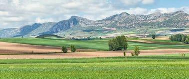 Montes obarenes-San Zadornil natuurreservaat Stock Afbeeldingen