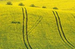 Montes ondulados coloridos em Moravia sul, República Checa Fotografia de Stock