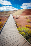 Montes pintados, John Day Fossil Beds Oregon Imagens de Stock