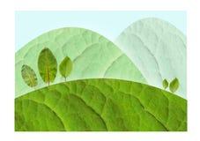 Montes verdes Imagem de Stock Royalty Free