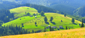 Montes verdes Imagens de Stock Royalty Free