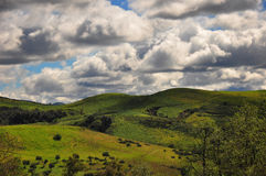 Montes verdes da garganta Imagem de Stock Royalty Free