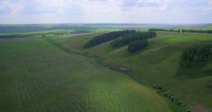 Montes verdes e campos filme