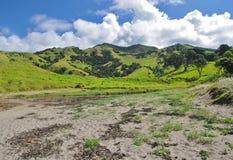 Montes verdes em Nova Zelândia Foto de Stock Royalty Free