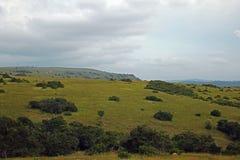 Montes verdes sob o céu nebuloso Foto de Stock