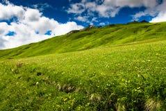 Montes verdes um prado Fotos de Stock