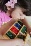 Montessori pussel. Förträning. Royaltyfri Fotografi