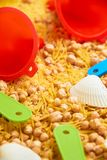 Montessory sensory texture experimentation in school. With chickpea and pasta Stock Photos