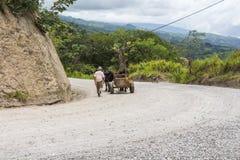 Monteverde风景,哥斯达黎加 免版税库存图片