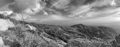 Monteverde Chmurnieje las rezerwę w Costa Rica, czarny i biały obrazy royalty free