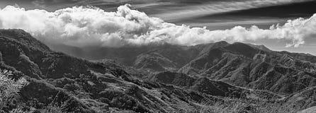 Monteverde Chmurnieje las rezerwę w Costa Rica, czarny i biały obraz royalty free