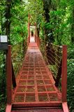 A suspension bridge allows visitors at the Monteverde Cloud Forest Reserve to view the jungle amidst the canopy of trees. stock image