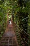 A visitor crosses a suspension bridge in Monteverde Cloud Forest Reserve. stock photos