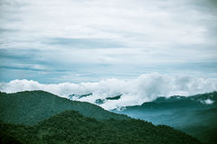 Monteverde Costa Rica royalty-vrije stock foto