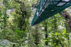 Monteverde hängande bro - Costa Rica arkivfoto