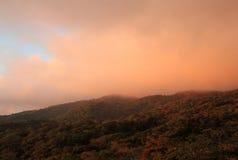 Monteverde molnskog Royaltyfri Fotografi