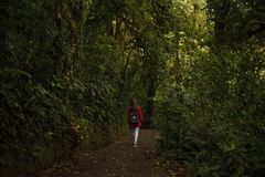 Young girl hiking in Monteverde Claude forest with a practical Fjallraven Kanken backpak. Monteverde,Puntarenas/Costa Rica-24 January,2019:young traveler hiking royalty free stock photography