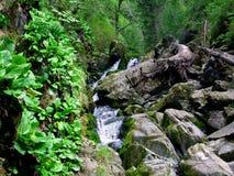 Montez en cascade la cascade à écriture ligne par ligne photo stock