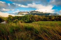 Montez le ` d'Auyantepuy de ` dans la grande savane, Venezuela Photo libre de droits