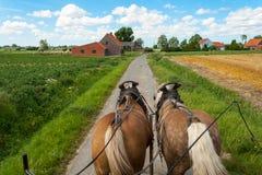Montez par les champs flamands avec le cheval et le chariot couvert. Image libre de droits