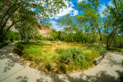 Montezuma Castle dwelling Royalty Free Stock Photography