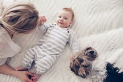 2 month old baby with mom and dog. Home portrait of a 2 month old baby with mom and dog on the bed. Mother playing with the child and pet Stock Photography