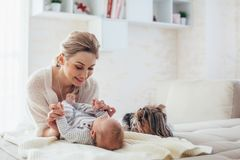 2 month old baby with mom and dog. Home portrait of a 2 month old baby with mom and dog on the bed. Mother playing with the child and pet royalty free stock image