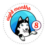 Monthly baby sticker Royalty Free Stock Image