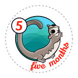 Monthly baby sticker Royalty Free Stock Photos