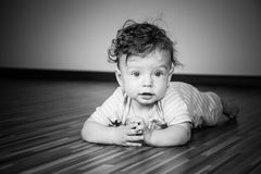 7 months baby boy Stock Image