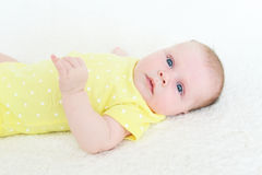 2 months baby girl Royalty Free Stock Photos