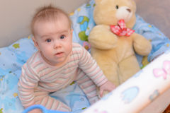 8 month old baby in playpen. With a toy Royalty Free Stock Image
