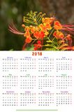 12 Months Calendar Design 2018 Royalty Free Stock Images