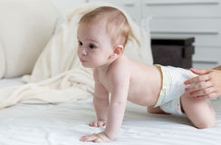 9 months old baby boy in diapers crawling on bed with white shee Royalty Free Stock Photos
