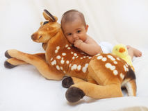 4 months old baby boy playing with soft toy dear and chick Stock Photo