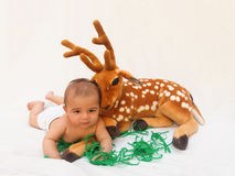 4 months old baby boy playing with soft toy dear and chick Royalty Free Stock Photography