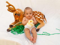 4 months old baby boy playing with soft toy dear and chick. White background royalty free stock images