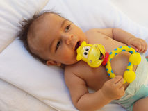 3 months old baby boy playing with teething toy. Giraffe, white background Royalty Free Stock Image