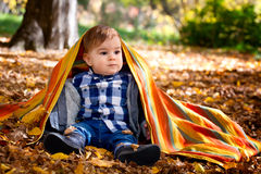 8 months old boy in the fall Stock Photography