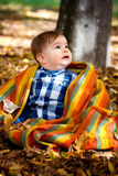 8 months old boy in the fall Stock Photo