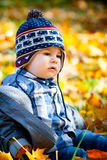 8 months old boy in the fall Royalty Free Stock Image