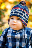 8 months old boy in the fall Stock Photos