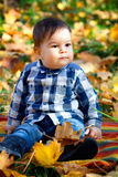 8 months old boy in the fall Royalty Free Stock Photo