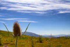 Monti della Laga. Landscape Monti della Laga - Italy Royalty Free Stock Image