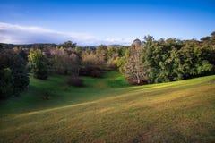 Monti le colline e gli alberi alti dei giardini botanici nel sole di pomeriggio Immagine Stock Libera da Diritti